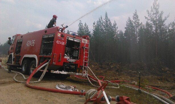 Strażacy z Gniezna gaszą pożary lasów w Szwecji