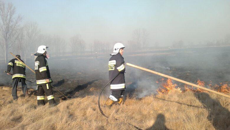 Leśnicy i strażacy apelują o rozsądek