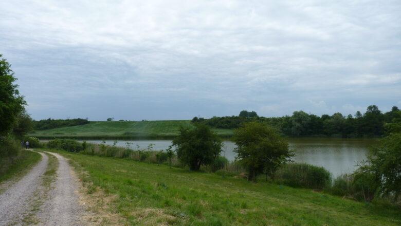 Zielone światło dla paneli słonecznych, radna Renata Buzała osamotniona w walce o ratowanie krajobrazu